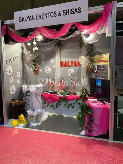 Nuestros servicios Galyan