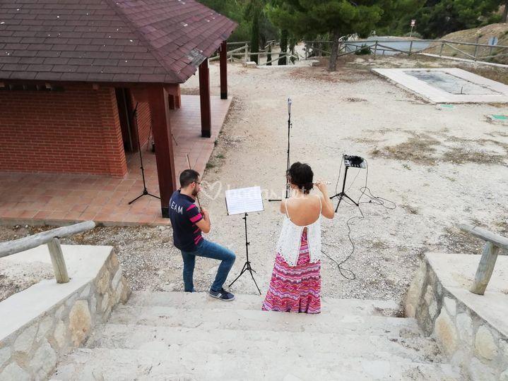 Violín y flauta