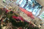 Decoraci�n de la mesa de Finca San Miguel
