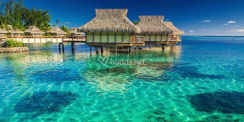 Despertar en Maldivas