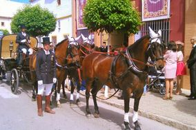 Caballos Carbonell