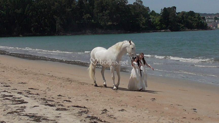 Paseo por la playa de Carruajes Galicia