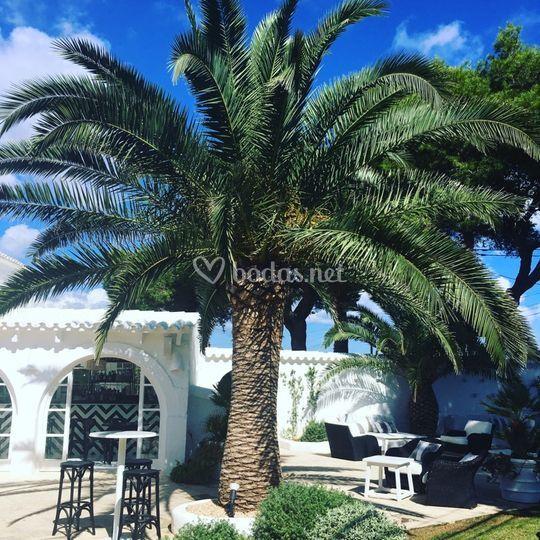 Restaurant Villa Blanca
