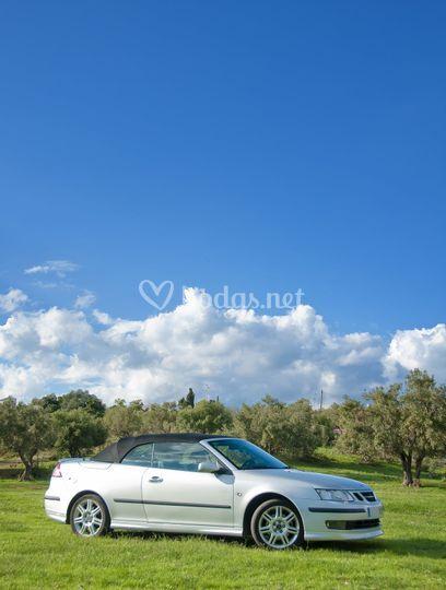 Saab 93 cabrio