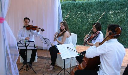 Cuarteto Alcarria