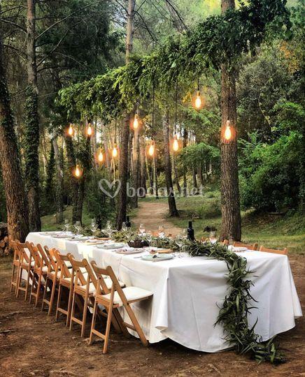 Cena en el bosque