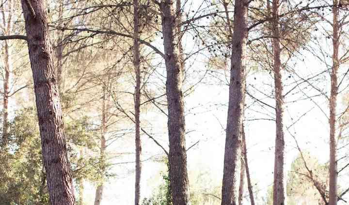 Ceremonia civil en el Bosque