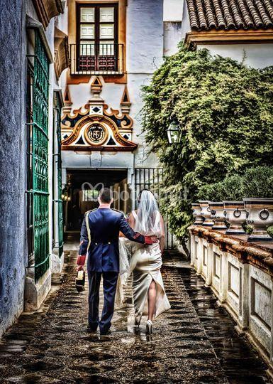 Wedding Art Sevilla