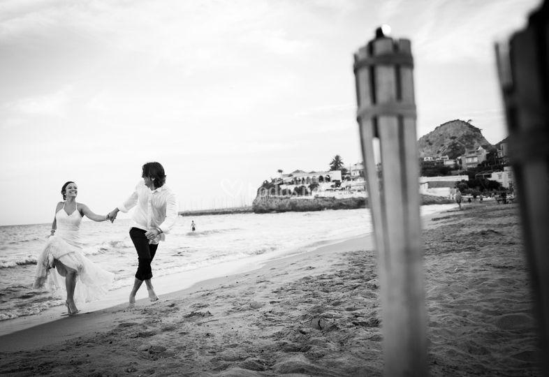 Alcolor Fotógrafos ©