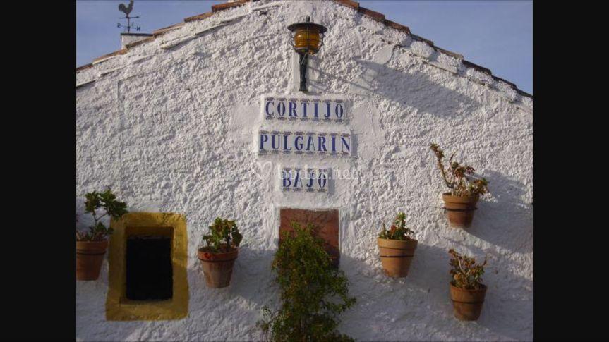 Cortijo Pulgarín Bajo