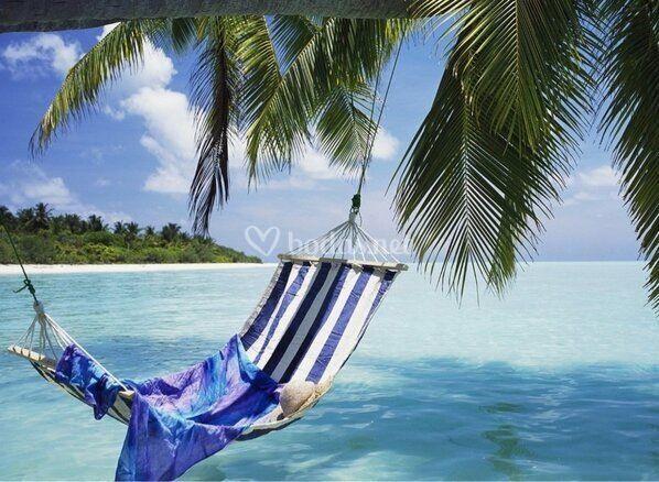 Relax en el Punta Cana