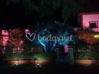 Iluminación cena boda