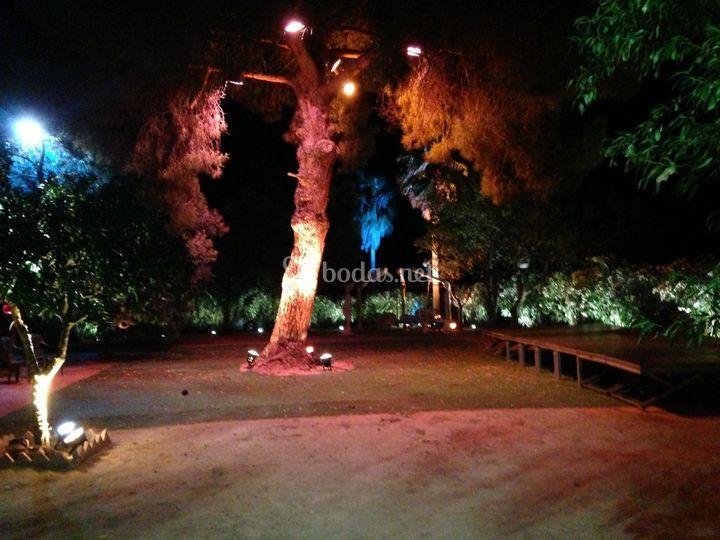 Jardín listo para el evento