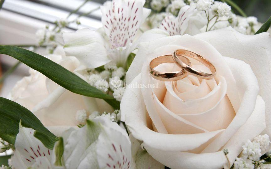 Compromiso anillos