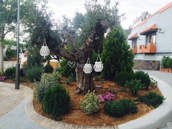Decoración de árboles