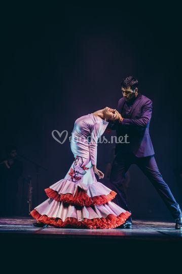 Dúo de flamenco