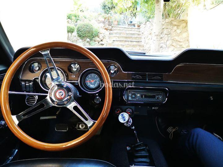 Interior con el volante