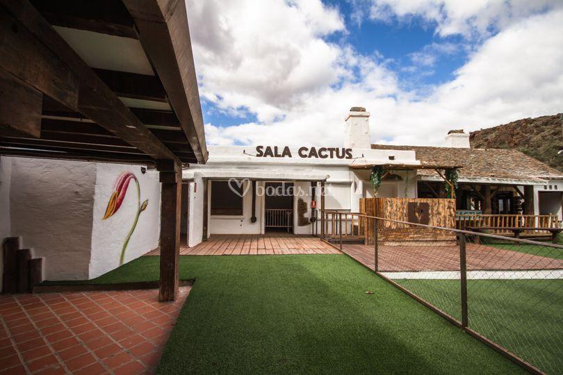 Sala Cactus