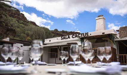 Sala Cactus 1