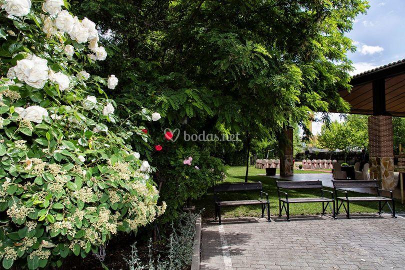 Entrada y jardines