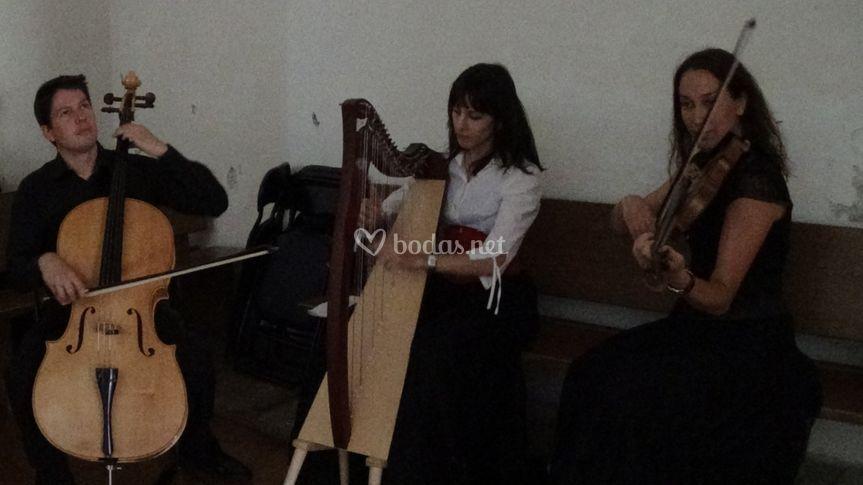 Trío de arpa,violín y violonchelo