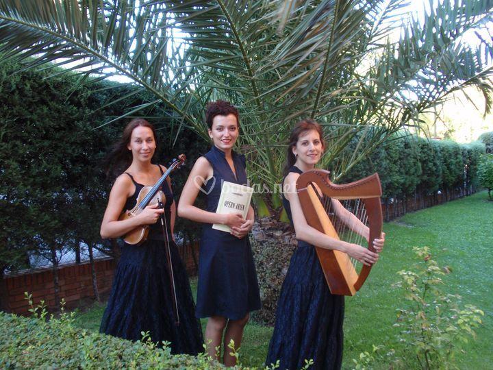 Trío arpa celta, violín y soprano
