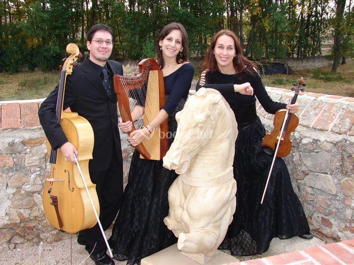 Trío arpa celta, violín y violonchelo