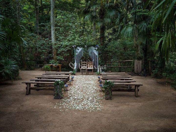 Cerimonia en el bosque