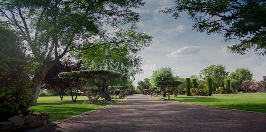 Jardines El Olivar
