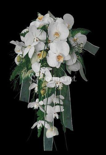 Bouquet flores blancas
