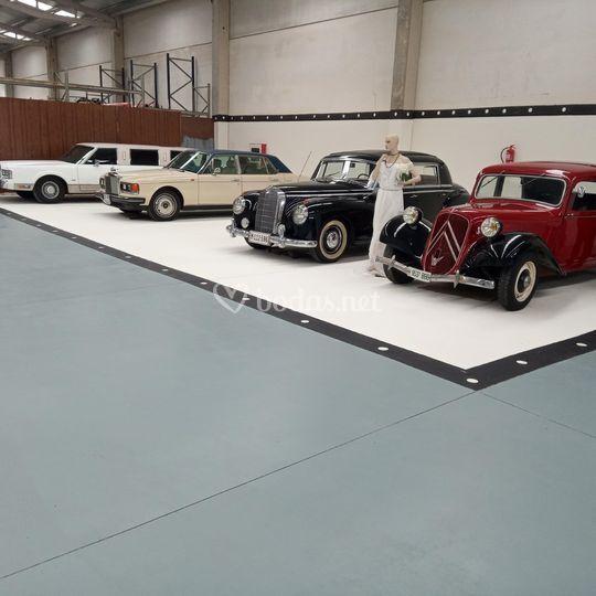 Exposición de los vehículos