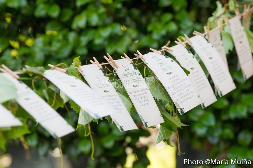 Business plan fotografia de bodas