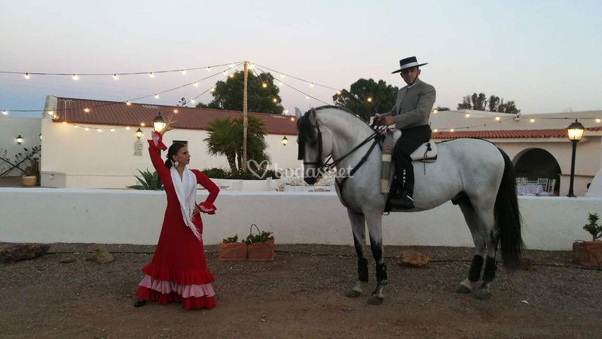 Danza Ecuestre Javier Guardia Peralta