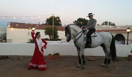 Danza Ecuestre Javier Guardia Peralta 1