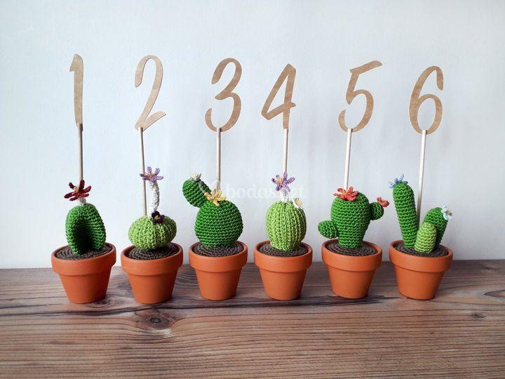 Meseros con cactus
