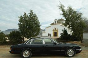 Jaguar clasico