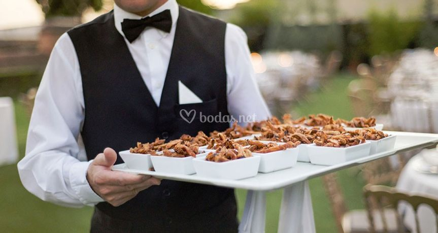 Catering Grupo Orca