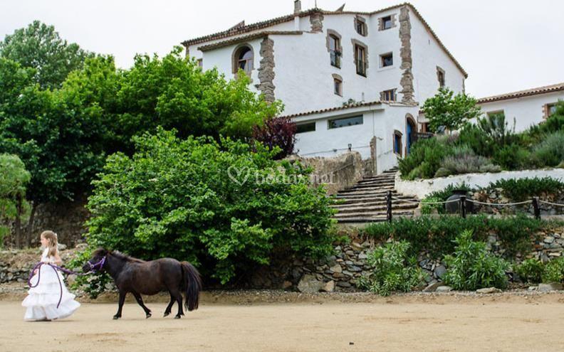 Vista exterior de L'Avellana Mas d'en Cabre