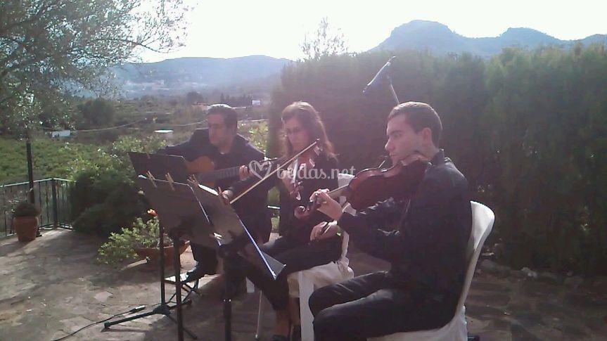 Guitarra y dos violines
