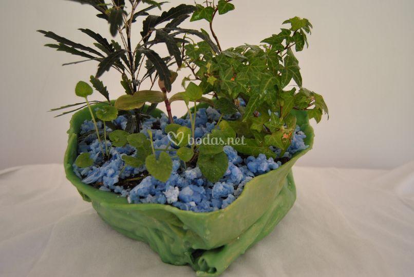 Mi jardín de jade 19 €.