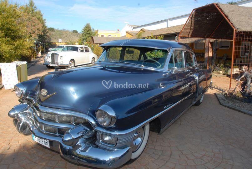 Cadillac Azul Mimado