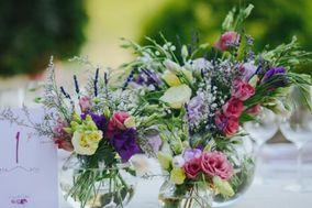 Flors Paradis