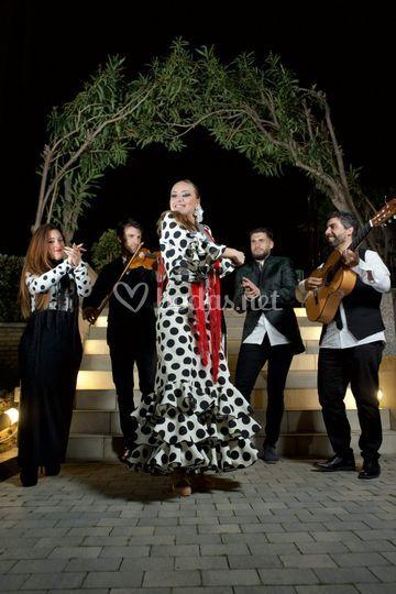 Equipo Flamenco Events