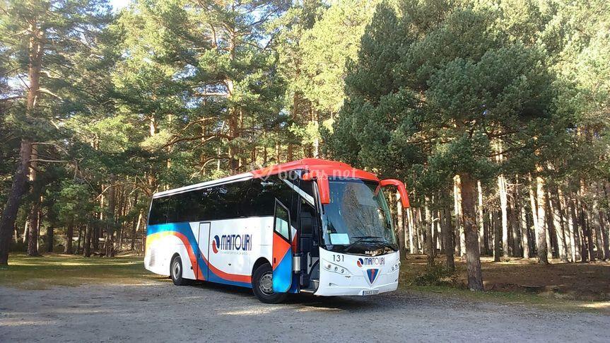 Autobús 40 plazas
