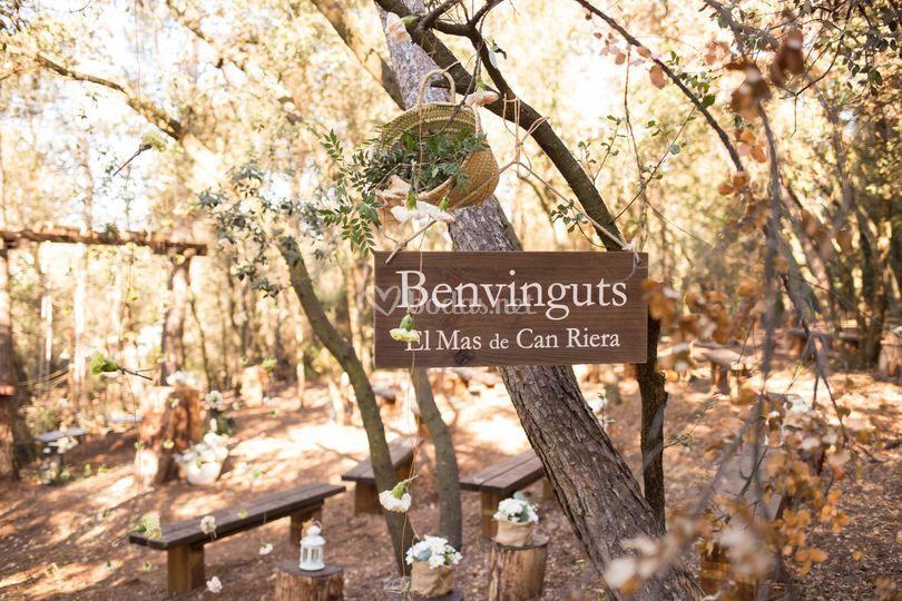 Entrada boda en el bosque