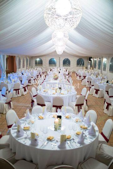 Carpa para grandes bodas