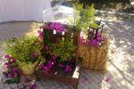 Decoraciones Florales exterior