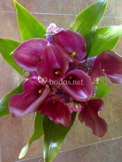 Bouquet callas