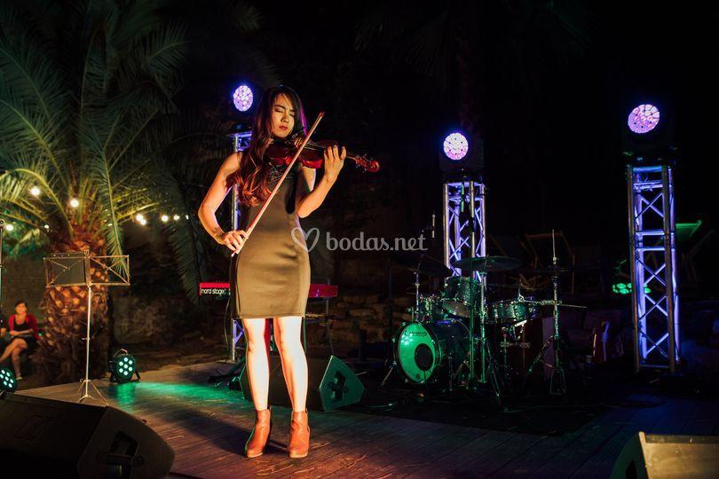 Violinista en directo