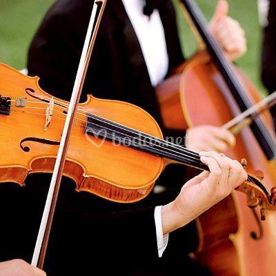 Violín & Cello
